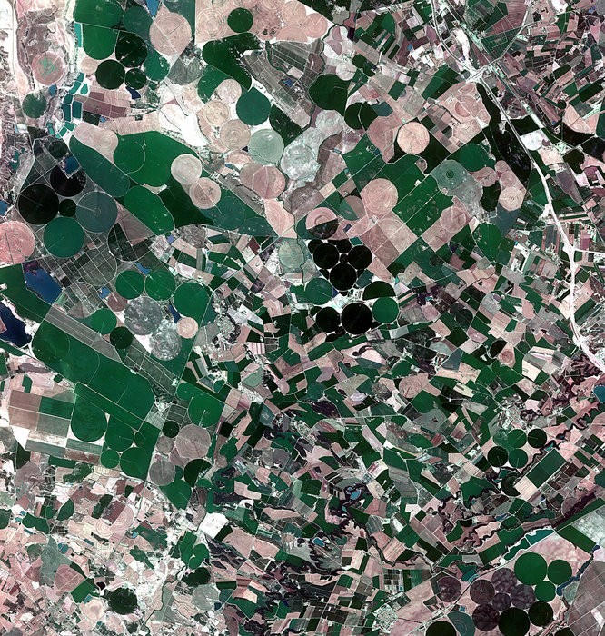 Agricultural_crops_in_Aragon_and_Catalonia_node_full_image_2.jpg