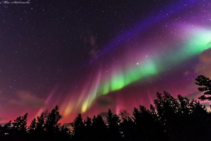 AuroraconformadebanderasobreSuecia-AuroraFlag_Stalnacke_6677.jpg